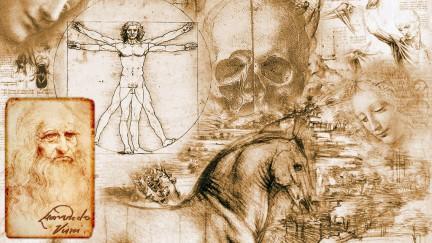 anatomia_leonardo_da_vinci